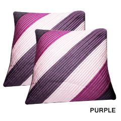 Rotomax Set of 2 Pcs Silk Cushion Cover of 12 x 12 Inches