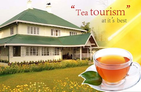 ExploreDarjeeling : Tea Garden and Culture Trail