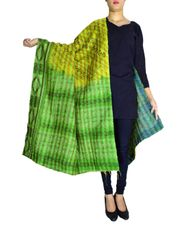Reversible Kantha Dupatta in Cotton Silk-Green&Blue