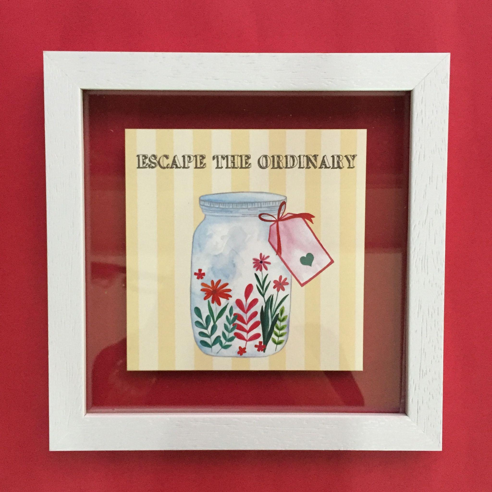 Escape the Ordinary' Wall Frame