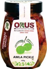 Orus Amla Pickle |limitTo:2