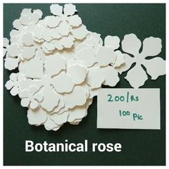 Botanical Rose - 06
