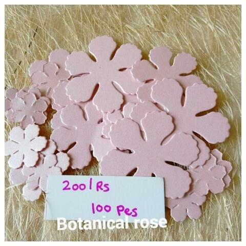 Botanical Rose - 02