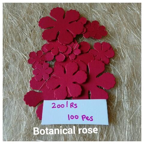 Botanical Rose - 03