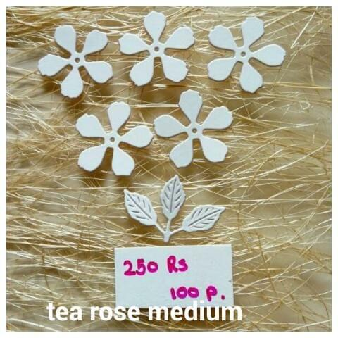 Tea Rose Medium