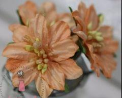Mulberry Lily with Pollens - Orange