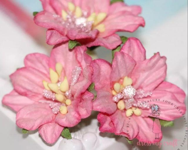 Mulberry Lily with Pollens - Pink