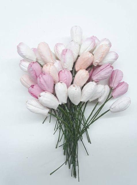 Mixed Tulip Buds Baby Pink in Color 40 Buds in Pack.