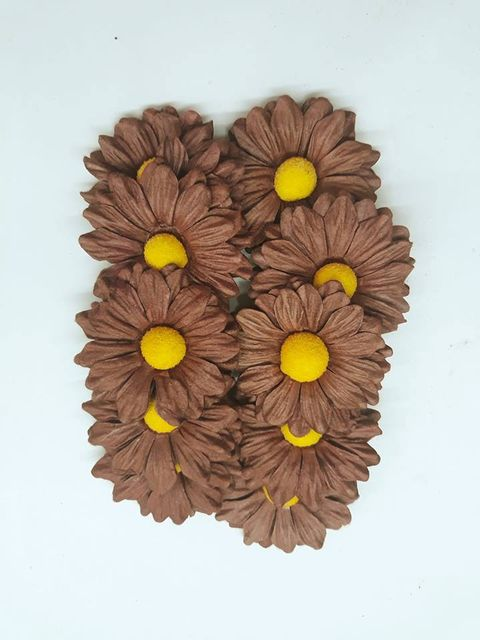 Daisy Sun Flowers Musterd Brown in Color Pack of 25 Flowers.