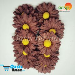 Daisy Sun Flowers Brown in Color Pack of 25 Flowers.