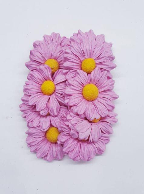 Daisy Sun Flowers Pink in Color Pack of 25 Flowers.