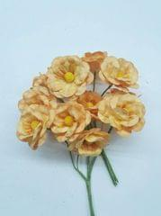 Mulberry Lily Flower Mango Yellow in Color Pack of 12 Bunches