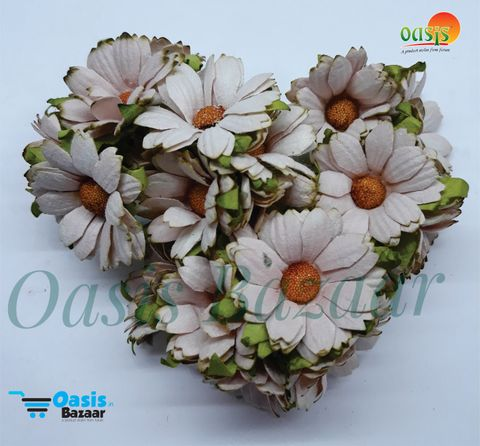 Daisy Sun Flowers Light Brown in Color Pack of 10 Bunches.