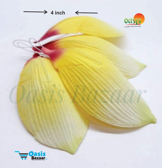 Paper Thai Bud Petals Big in Size pack of 25 pcs 04