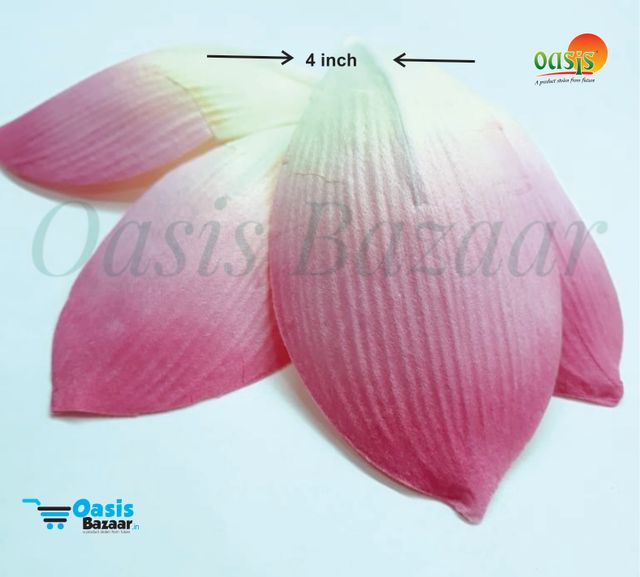 Paper Thai Bud Petals Big in Size pack of 25 pcs 08