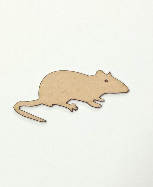 WE Animal Mouse.