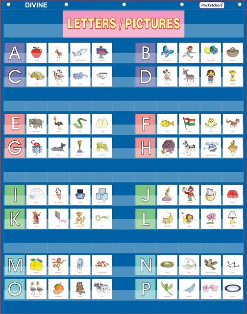 Pocketchart Alphabet & Varnmala Pocket Chart