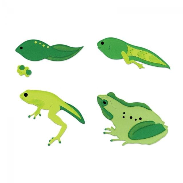 Sizzix Bigz Die Set - Frog Life Cycle (4 Die Set) - A10731