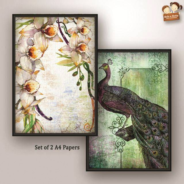 Decoupage Paper - Peacock 5  (Pack of 1 set)