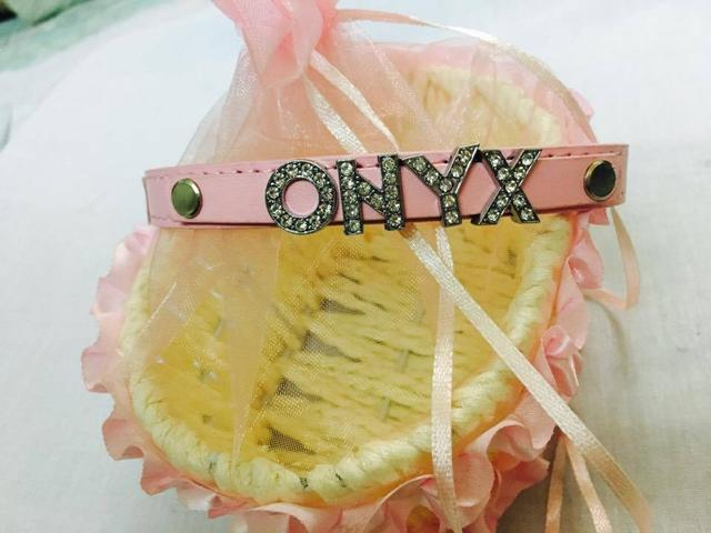 Personalised Name Charm Collar - L - Pink (upto 5 letters)