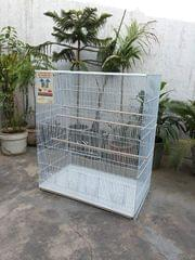 Bird Cage for Canary Finch Lovebird Cocktails Budgerigars and Dove white colour