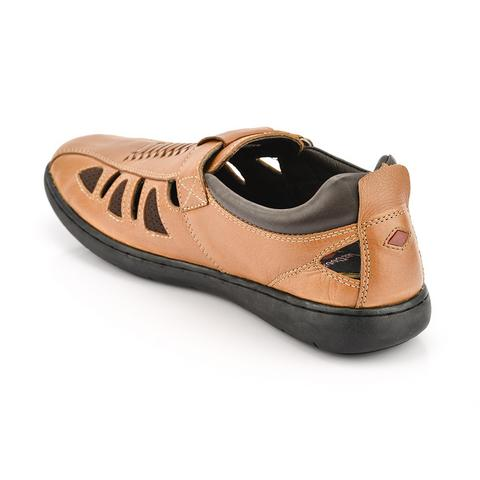 LC2203 Brown
