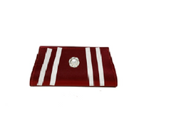 Port Exclusive Maroon Silver Box Clutch