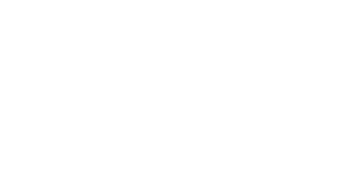Mr.Shoes