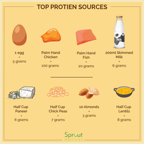 Protein Intake