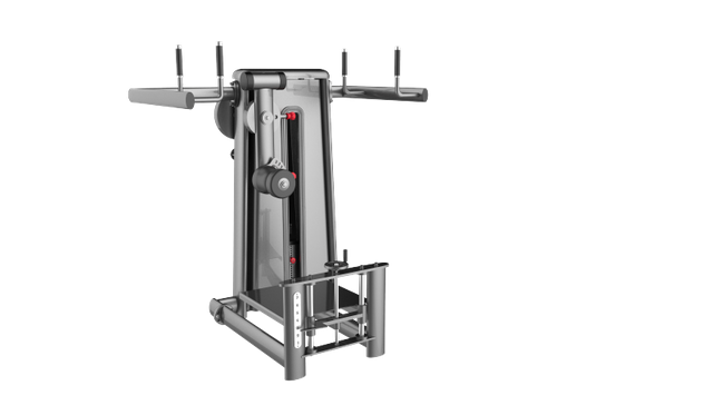 TOTAL HIP MACHINE 3006