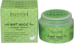 Sattvik Organics Mint Magic 40 Gms (Pack Of 3)