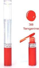 Color Fever Premium Lip Gloss Shine - Tangerine (Set Of 4)