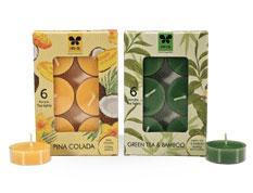 Iris Aroma Candle-Greentea & Bamboo (Pack of 6)