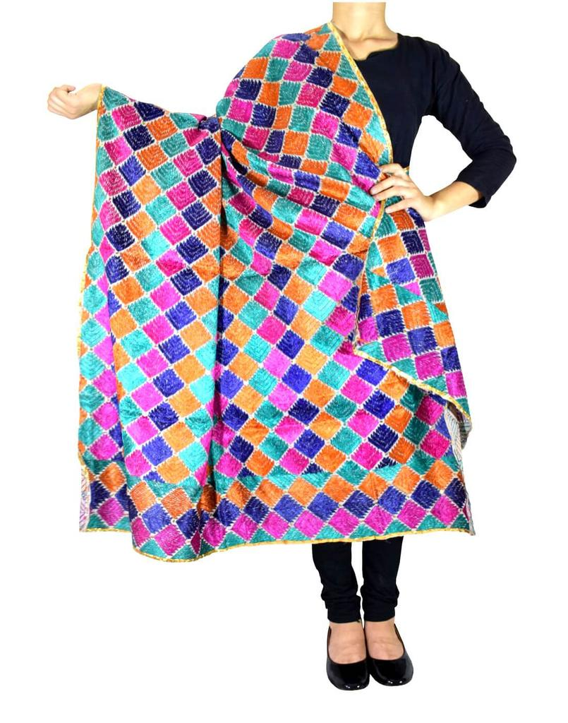 Cotton Bagh/Phulkari Dupatta-Multicolor 2