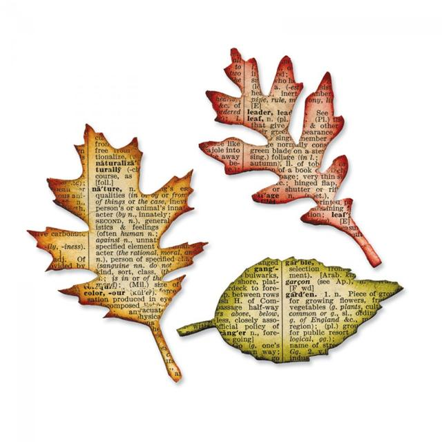 Sizzix Bigz Die - Tattered Leaves - 656927