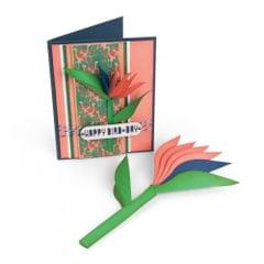 Save   Sizzix Framelits Die Set 6PK - Bird of Paradise, 2-D & 3-D - 662782
