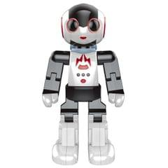 Modelart Kids Programmable Walking, Dancing DJ Robo R/C Robot, Multi Color