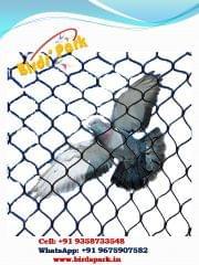 Balcony Pigeon Net - Anti Bird Net - Size :13x10feet (High Density Polyethylene (HDPE) - We Ship BY AIR
