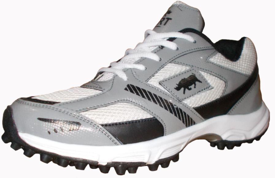 Port Men's Alligator Gray PU Cricket shoes
