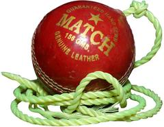 Priya Sports Red Hanging Cricket ball