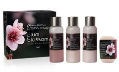 Aroma Magic Plum Blossom Travel Kit