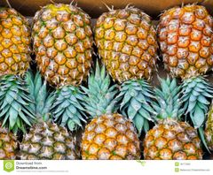 PINEAPPLE 1 P.C (MEDIUM)