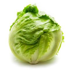 LETTUCE_1 PIECE MEDIUM