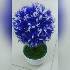Evason Flowers