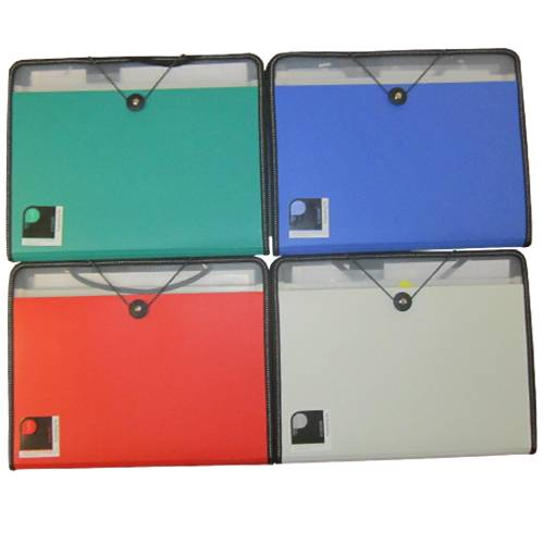 Deli Filling Series Plastic Display Book (Set Of 4, Green, Blue, White, Red) (DELI5860)