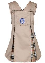 Gyanshree Beige Tunic for Girls (Pre Primary)