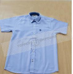 DIS Boys Half Sleeves Shirt (Class 1 to 12)