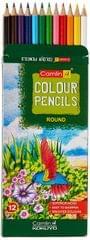 Camlin Pencil Colour