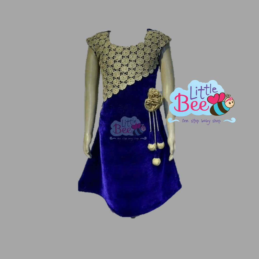 Little Bee Blue Velvet Dress