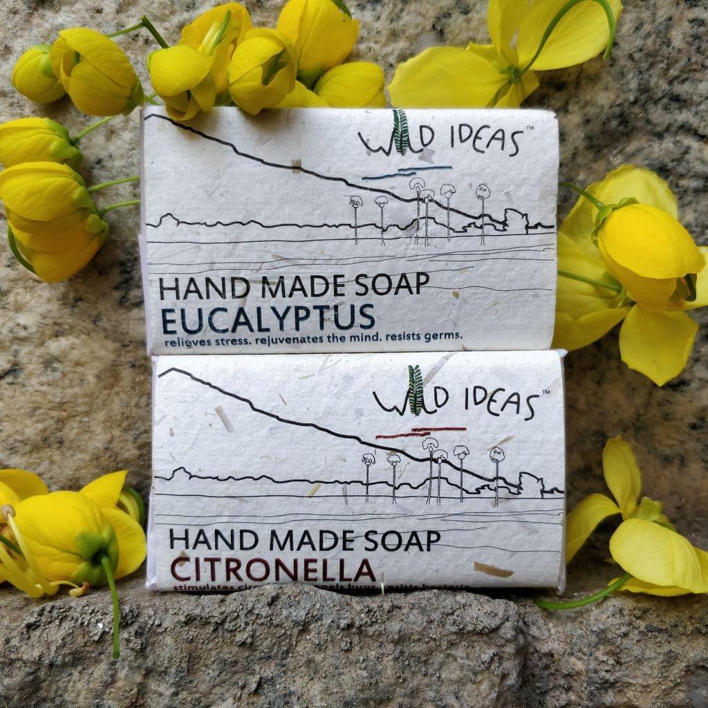Wild Ideas Soaps Citronella and Eucalyptus Combo